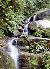 Brazil_Rio_Waterfall.jpg