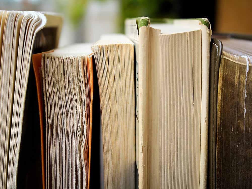 International literature displayed at the Havana Book Fair.