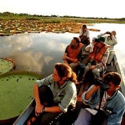 Group of students studying the biodiversity of Rupununi, Guyana from a river boat during a study tour.