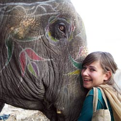 Volunteer-Educational India elephant sanctuary
