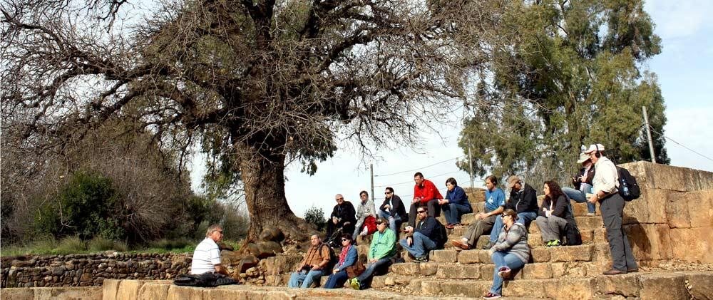 Israel - Tel Dan group stairs
