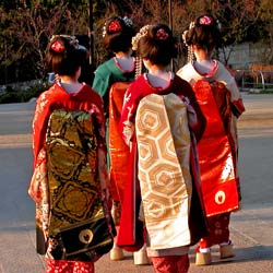 Learn about the life of a Geisha as you study Japanese culture.