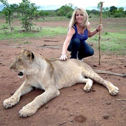 Woman Alum posing for a photo with a young lion after walking with the pride during a trip to a conservation project in Zimbabwe.