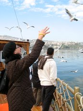 Sea of Galilee, Israel - Feeding Birds from Fishing Boat