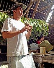 Cuba-tobacco-farmer-cigar-web.jpg